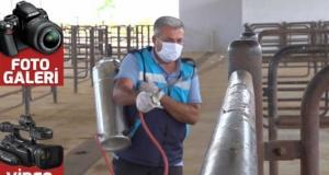 KMBB'den kurban satış ve kesim yerlerinde dezenfekte çalışmaları