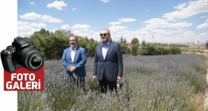 AK partili Ünal, Rabia Parkını gezdi