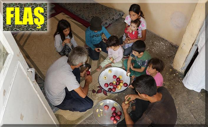 """Türkmen aile: """"Bizi de askere alın"""""""