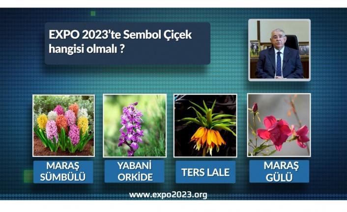 Mahçiçek,  EXPO 2023 sembol çiçeğini belirliyor
