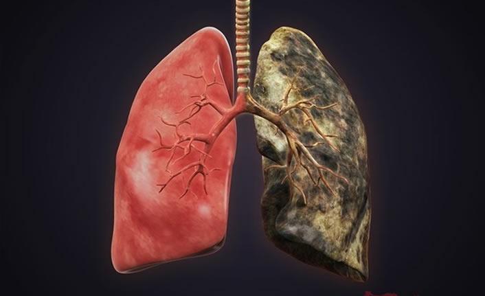 Akciğerleri kısa sürede temizliyor!