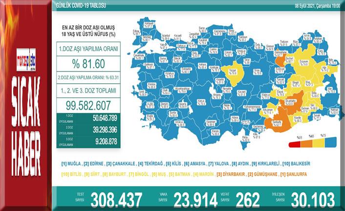 Kovid-19'dan dün 262 kişi hayatını kaybetti