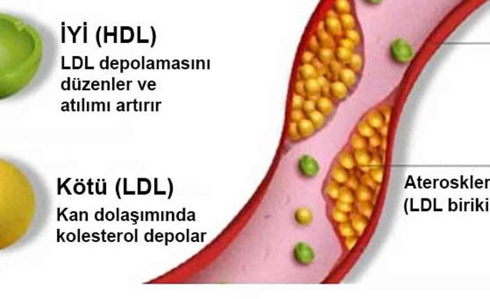 Kötü kolesterol riskini artıran faktörler nelerdir?