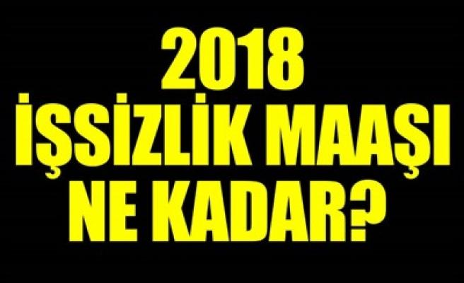 2018 İŞSİZLİK MAAŞI NE KADAR?