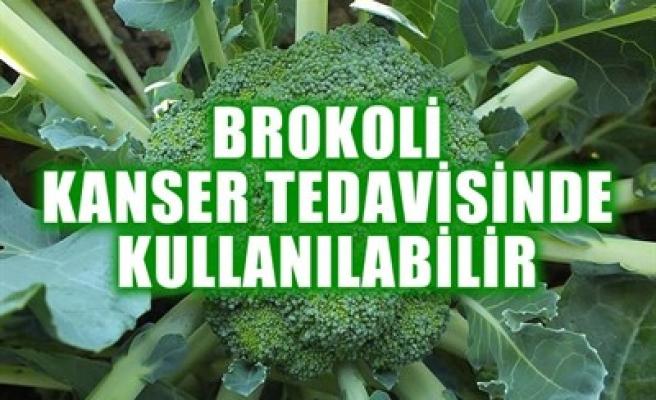 BROKOLİ KANSER TEDAVİSİNDE KULLANILABİLİR