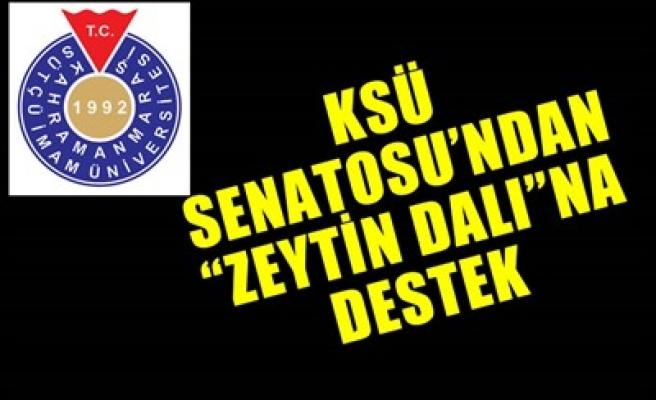 KSÜ SENATOSU'NDAN 'ZEYTİN DALI'NA DESTEK