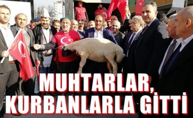 MUHTARLAR, KURBANLARLA GİTTİ