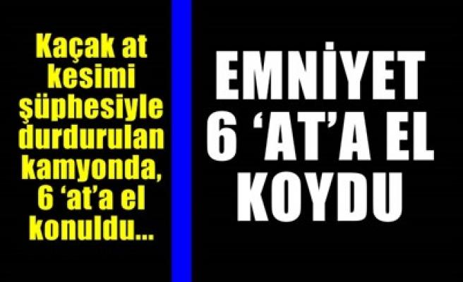 EMNİYET 6 'AT'A EL KOYDU