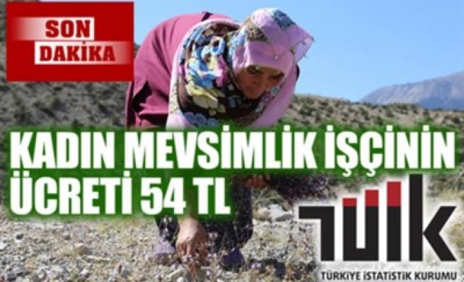 KADIN MEVSİMLİK İŞÇİNİN ÜCRETİ 54 TL