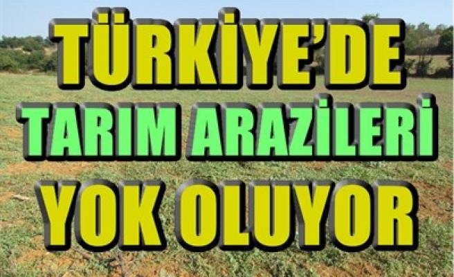 TÜRKİYE'DE TARIM ARAZİLERİ YOK OLUYOR