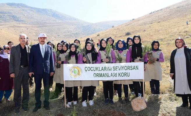 """""""SENİN DE BİR DİKİLİ AĞACIN OLSUN"""""""
