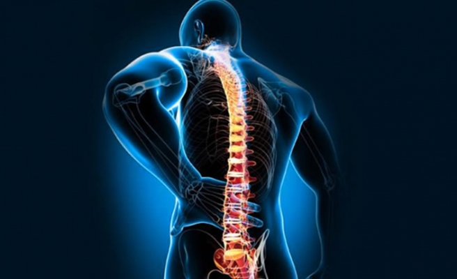 Omurga sağlığı için düzenli hareket edin