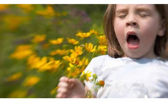 Sonbaharda yabani ot polenlerinden korunun
