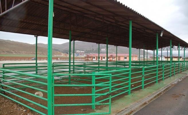 4 ilçedeki hayvan pazarları tedbir amaçlı kapatıldı
