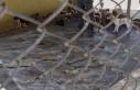 HAYTAP'tan Güngör'e Bakımevi tepkisi