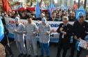 Çin'in Doğu Türkistan politikaları protesto...