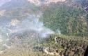 2 hektarlık orman yangında zarar gördü
