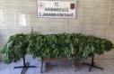 Uyuşturucu tacirleri jandarmadan kaçamadı…