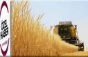 Tarım-GFE aylık yüzde1,98 arttı