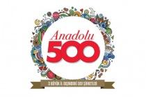 ANADOLU 500'DE 9 ŞİRKETİ VAR