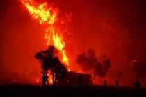 Bir ayda 300 orman yangını çıktı