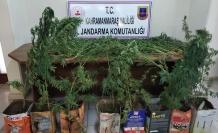 Jandarma, uyuşturucu ticaretine geçit vermiyor