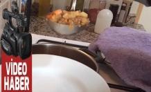 Yeşil mercimek yemeği: Yeşil Mercimek Pilaki Tarifi