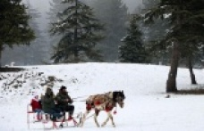Kahramanmaraş'ın Alpleri'nden kartpostallık görüntüler