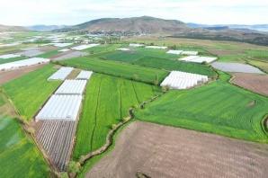 DSİ, Kahramanmaraş'ta 10 bin 843 hektar arazi toplulaştırdı