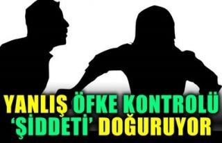 YANLIŞ ÖFKE KONTROLÜ 'ŞİDDETİ' DOĞURUYOR