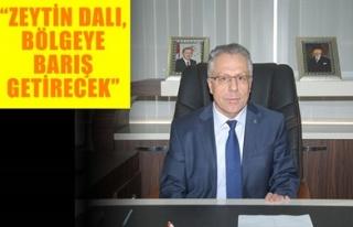 'ZEYTİN DALI, BÖLGEYE BARIŞ GETİRECEK'
