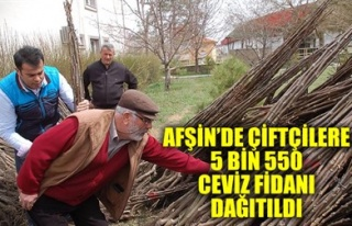 AFŞİN'DE ÇİFTÇİLERE 5 BİN 550 CEVİZ FİDANI...
