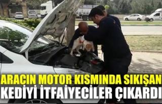 ARACIN MOTOR KISMINDA SIKIŞAN KEDİYİ İTFAİYECİLER...