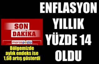 ENFLASYON YILLIK YÜZDE 14 OLDU