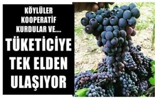 KÖYLÜLER KOOPERATİF KURUP TÜKETİCİYE TEK ELDEN...