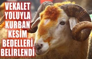 VEKALET YOLUYLA KURBAN KESİM BEDELLERİ BELİRLENDİ