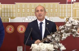 """""""PAMUK ÜRETİCİSİ DEVLET GÜVENCESİ İSTİYOR!"""""""