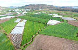 DSİ, Kahramanmaraş'ta 10 bin 843 hektar arazi...