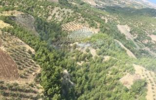 Yangın, 1 hektar alana zarar verdi!