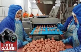 Türkiye'nin tek köfte fabrikası: Pul biberi...
