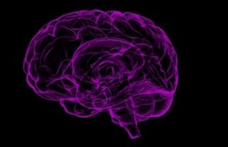'Dünyada tahminen 65 milyon epilepsi hastası...