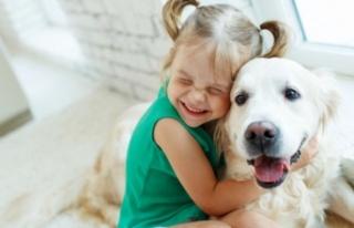 Evcil hayvanlar çocuklara sevgi ve şefkati öğretir