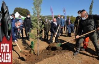 21 Mart Dünya Ormancılık Haftası kutlandı
