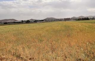 2021 su/tarım yılı 7 aylık yağışları yüzde...