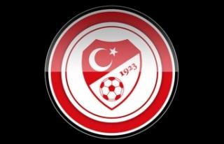 A Milli Futbol Takımı, İsviçre maçı hazırlıklarını...