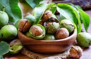 Damarları temizleyen süper besin: CEVİZ