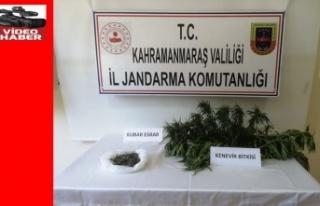 Jandarma uyuşturucuya göz açtırmıyor