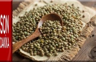Yeşil mercimek faydaları nelerdir?