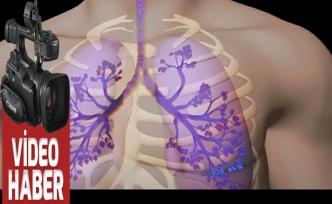 Akciğerlerimizi tertemiz yapan besinler