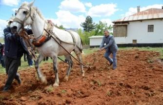 Tarım dünyada stratejik bir öneme sahiptir